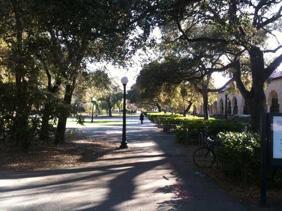 Stanford University Street